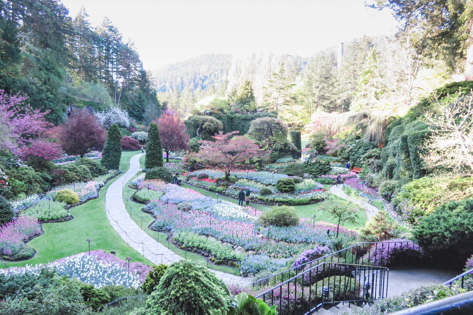 Visiting Butchart Gardens The Ultimate Guide Solemate Adventures